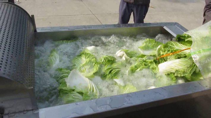 Máy rửa rau dạng lá
